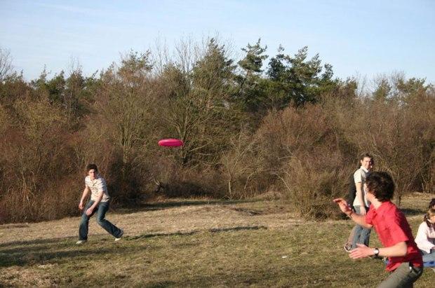 picnic-frisbee